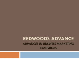 Redwoods Advance Singapore excels in business marketing