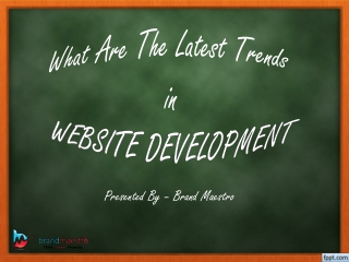 What Are the Latest Trends in Website Development