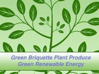 Green Briquette Plant Produce Green Renewable Energy