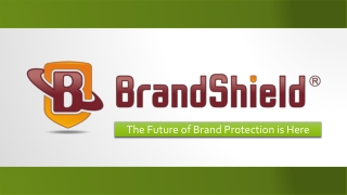 About BrandShield's Technology