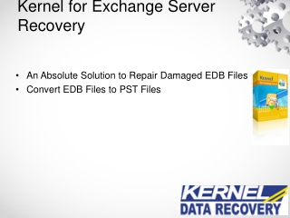 EDB to PST Conversion with Kernel Exchange Server Recovey