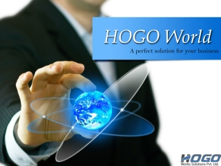 HOGO World - A perfect solution for your business