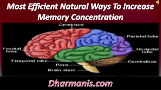 Most Efficient Natural Ways To Increase Memory Concentration