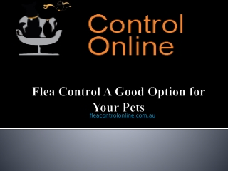 Flea Control: A Good Option for Your Pets
