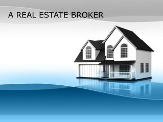 A REAL ESTATE BROKER