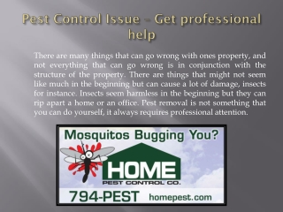Pest Control Issue