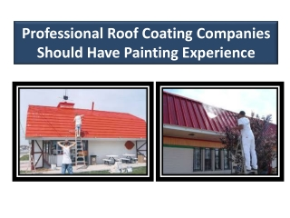 Professional Roof Coating Companies Should Have Painting Exp