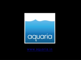 For Planted Fish Aquarium Chennai, India visit Aquaria.in