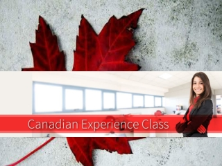 """How Can I Qualify Under Canadian Experience Class When Immi"