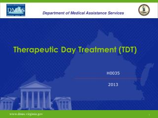 Therapeutic Day Treatment (TDT)