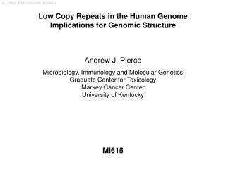 Low Copy Repeats in the Human Genome Implications for Genomic Structure