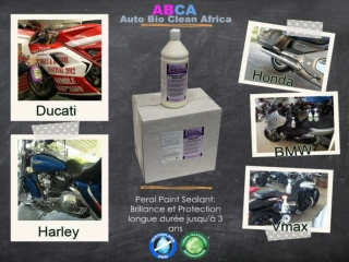 Motorcycle Shine with Pearl Paint Sealant