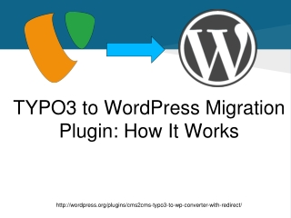 TYPO3 to WordPress Migration Plugin: How It Work