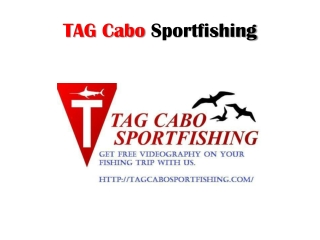 cabo san lucas sportfishing packages