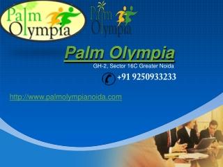 Palm Olympia
