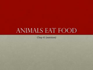 Animals Eat Food