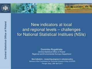 N ew indicators at local  and regional level s – challenges  for National Statistical Institues (NSIs)
