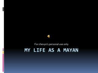 My life as a Mayan