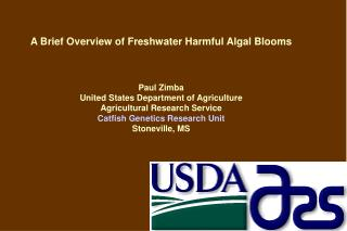 A Brief Overview of Freshwater Harmful Algal Blooms Paul Zimba United States Department of Agriculture Agricultural Rese
