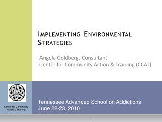 Implementing Environmental Strategies