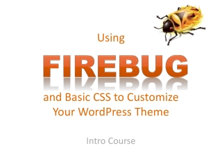 Using and Basic CSS to Customize  Your  WordPress  Theme