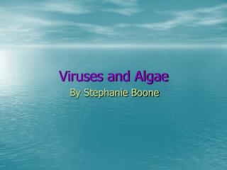 Viruses and Algae