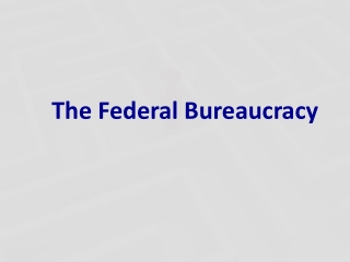 Who Are Bureaucrats