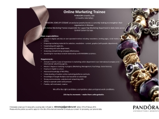 Online  Marketing Trainee PANDORA Jewelry CEE (3 months internship)