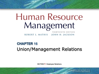 CHAPTER 16 Union/Management Relations