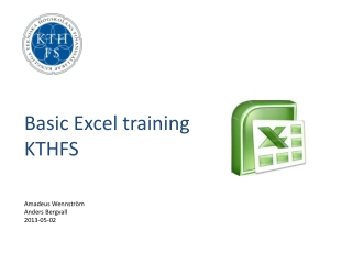 Basic Excel  training KTHFS