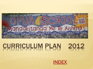 Curriculum Plan    2012
