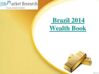 JSB Market Research : Brazil 2014 Wealth Book