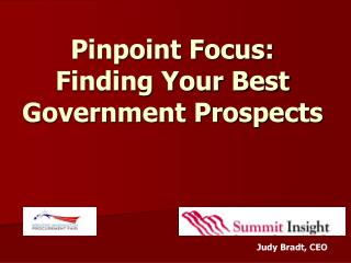 Pinpoint Focus:  Finding Your Best Government Prospects