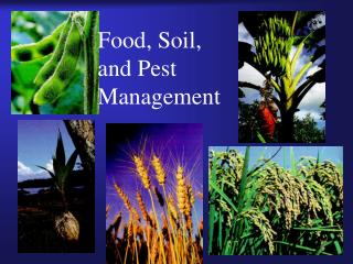 Food, Soil,                          and Pest Management