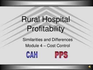 Rural Hospital Profitability