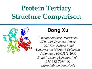 Protein Tertiary Structure Comparison