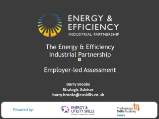 The Energy & Efficiency  Industrial Partnership Employer-led Assessment