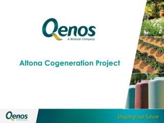 Altona Cogeneration Project