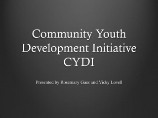 Community Youth Development Initiative CYDI