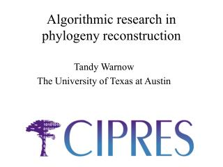 Algorithmic research in phylogeny reconstruction