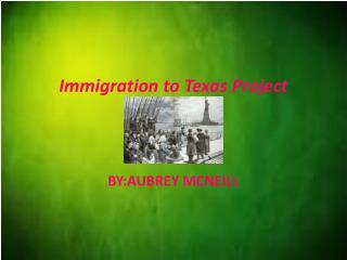 Immigration to Texas Project