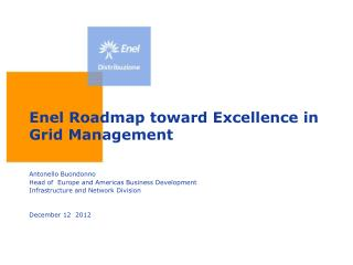 Enel Roadmap toward Excellence in Grid Management