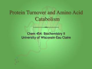 Protein Turnover and Amino Acid Catabolism