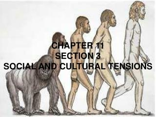 CHAPTER 11 SECTION 3 SOCIAL AND CULTURAL TENSIONS