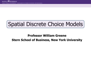 Spatial Discrete Choice Models