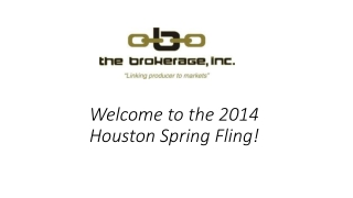 Welcome to the 2014 H ouston Spring  Fling!