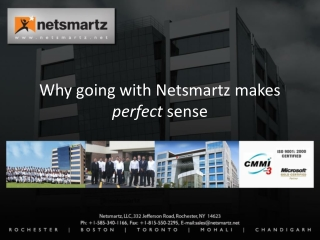 Why going with Netsmartz makes  perfect  sense