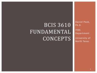 BCIS 3610 Fundamental Concepts