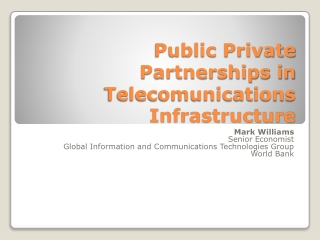 Public Private Partnerships in  Telecomunications  Infrastructure