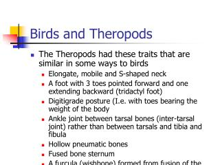 Birds and Theropods